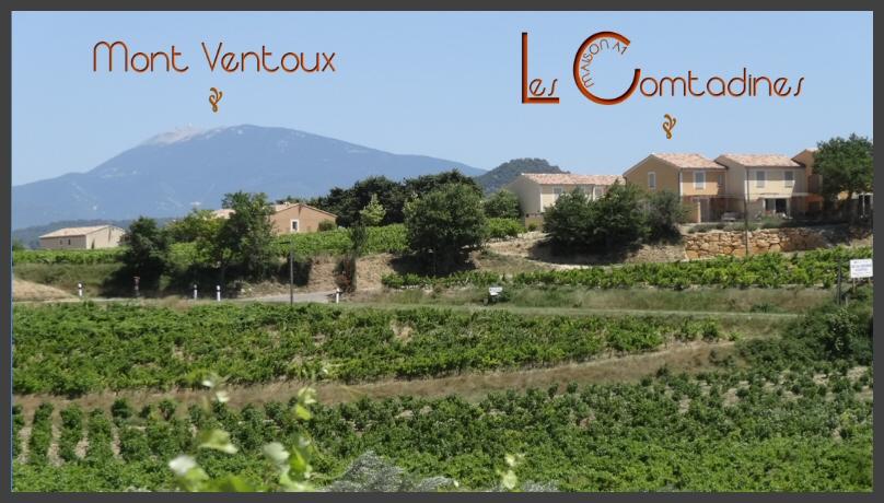 Zicht vanuit de wijngaarden van Rasteau op het vakantiehuis Les Comtadines - Maison A1, met de Mont Ventoux op de achtergrond.